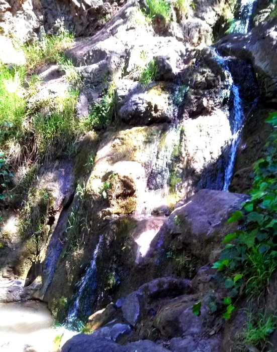 She took me to a hidden waterfall (it's on private property!).