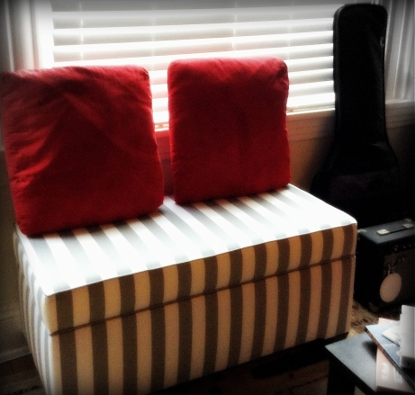 I bought a new bench for extra seating space; it also functions as a storage trunk!